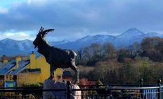 King Puck Statue, Killorglin, co. Kerry, Ireland