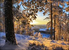 Winter Morning Finland ...  by Valtteri Mulkahainen, via 500px
