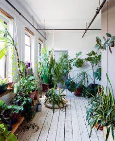 greenterior Indoor Garden, Indoor Plants, Urban Rooms, Hm Home, Plants Are Friends, Room With Plants, Plant Decor, Houseplants, Flower Power