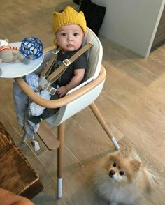 Little #prince and his furry #friend 🐶, ready to have lunch 😇🍝 Looks like the #pom wishes to be up there as well on our #beautiful OVO #highchair like a little sir 😂 But, honestly, who wouldn't wish that? Adorable pic by @oxbuddyslovexo