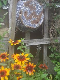 My favorite flowers and old graniteware