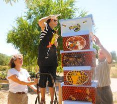 UC Davis: Department of Entomology / Laidlaw Facility: Thinking Outside the Box