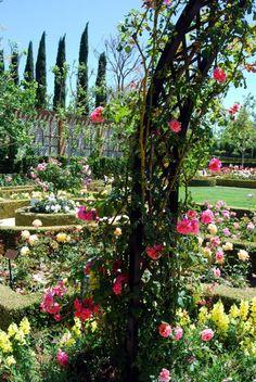Rose Arch- Rose Garden-Fine Art Photography-Wall Art-Home Decor-8X10 Print