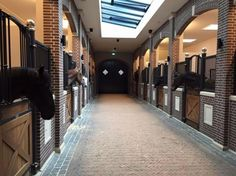 Outstanding stables in Netherlands. The GLOCK stables. Barn Stalls, Horse Stalls, Horse Barns, Dream Stables, Dream Barn, Equestrian Stables, Horse Barn Designs, Horse Barn Plans, The Ranch