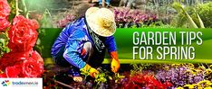Wondering if you should get out into the garden but not sure what to prune or sow? Check out our gardening tips for jobs you can do in January and February.