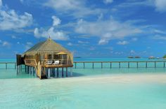 5-star Constance Moofushi Resort in Maldives 2, it's so beautiful I could cry