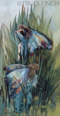 *Damsel fairies   Trudi Finch