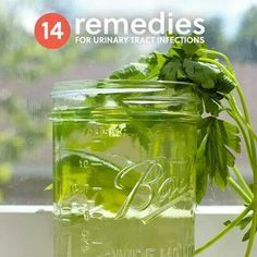 14 remedies for urinary tract infections