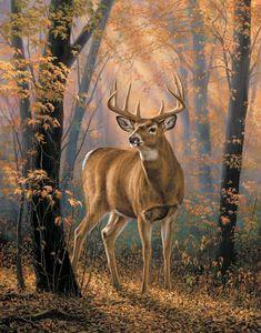 Мир животных...времена года | Rosemary Millette (часть 1). Обсуждение на LiveInternet - Российский Сервис Онлайн-Дневников