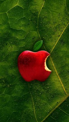 640x1136 Wallpaper apple, background, leaf, texture