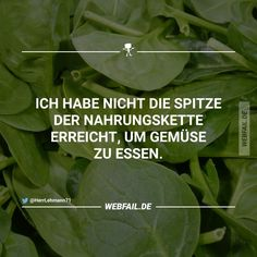 Das ist doch absurd   Webfail - Fail Bilder und Fail Videos Funny Pix, Funny Pictures, Funny Stuff, Jokes Quotes, Funny Quotes, Yes Man, Vegan Humor, Fail Video, Crazy Life