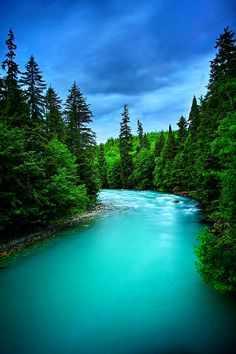 Big wedeene River,look beautiful and calm.