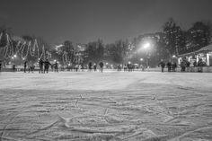 Attempt ice skating.Lol