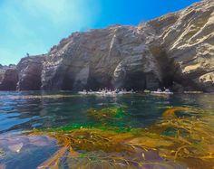 A kayak tour of the La Jolla sea caves by Everyday California - Travel San Diego - Ideas of Travel San Diego San Diego Vacation, San Diego Travel, San Diego Activities, Moving To San Diego, California Vacation, California Living, Southern California, San Francisco, Kayak Tours