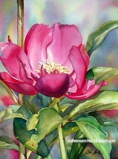 Colleen Sanchez, Water Colors, Watercolors Painting, Pink Peonies