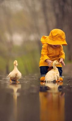 The boy reaches for the duckling. Cute Images, Cute Photos, Cute Pictures, Animals For Kids, Cute Baby Animals, Animals And Pets, Precious Children, Beautiful Children, Cute Kids