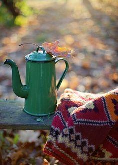 autumn is near.