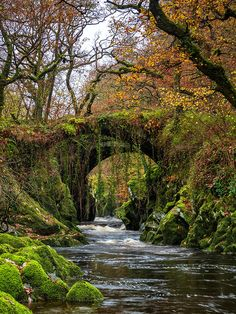 "visitheworld: ""The old roman bridge at Penmachno / North Wales (by Stephen Elliott). "" The old roman bridge at Penmachno / North Wales (by Stephen Elliott). Nature Landscape, Fantasy Landscape, Montana Landscape, Landscape Edging, Landscape Lighting, Landscape Architecture, Places To Travel, Places To See, Beautiful World"