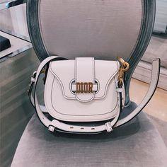 Dior Logo Bags