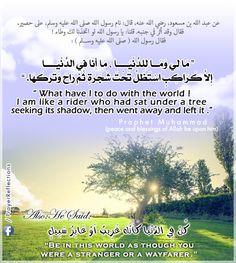""""""" مَا لِي وَمَــا للدنيا، مَا أَنَا فِي الدنيا إِلاَّ كَرَاكِبٍ اسْتَظَلَّ تَحْتَ شجرة ثم رَاحَ وَتَرَكَهَا. """" // ! What have I to do with the world, I am like a rider who had sat under a tree  seeking its shadow, then went away and left it. Ayah from Quran & Hadith of Prophet Muhammad"""