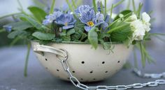 6 Ιδέες για να Κρεμάσετε τα Φυτά σας Μέσα στο Σπίτι