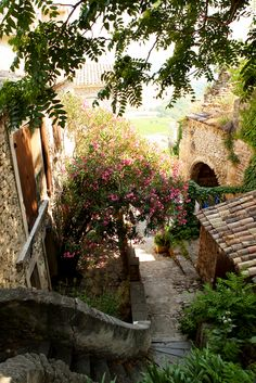 Summer in Le Provence. Beautiful Buildings, Beautiful Places, European Summer, Craftsman Style Homes, Provence France, Rustic Gardens, What A Wonderful World, South Of France, Next At Home