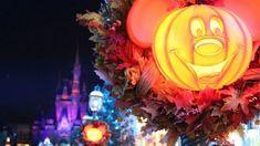 Mickey's Not-So-Scary Halloween Party Canceled For 2020 - Doctor Disney Halloween Magic, Adult Halloween Party, Disney Halloween, Halloween Season, Halloween Night, Vintage Halloween, Disney Destinations, Disney Vacations, Walt Disney World Tickets