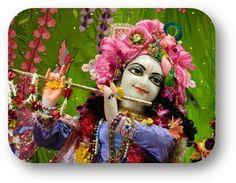 oday's Darshan (02-08-13) Sri Sri Krishna @ISKCONNVCC, Pune @ISKCONNVCC