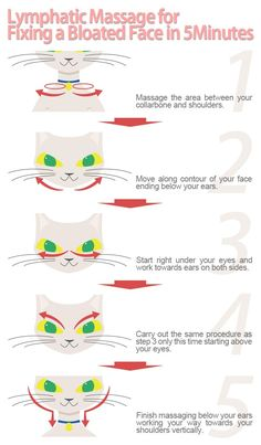 I didn't know this was a long held secret problem for cats.The easiest way to slim your face is to get rid of excess water retention crowding you face making you look bloated. Fix bloatedness in your face. Massage Tips, Face Massage, Massage Therapy, Bloated Face, Water Retention Remedies, Lymphatic Drainage Massage, Face Exercises, Good Health Tips, Healthy Tips