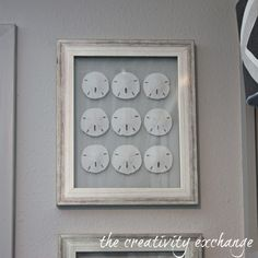 Tutorial for how to make double-sided glass frames for displaying shell collections {The Creativity Exchange}