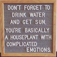 Funny Quotes : QUOTATION – Image : Quotes Of the day – Life Quote A houseplant with complicated emotions. Sharing is Caring Motivacional Quotes, Great Quotes, Quotes To Live By, Funny Quotes, Funny Inspirational Quotes, Motivational, The Words, Felt Letter Board, Decir No