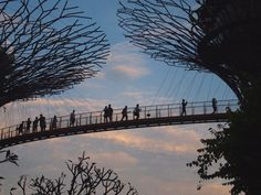 singapore Singapore, Traveling, Travel, Trips