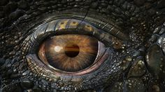 game of thrones dragon eye Iphone Wallpaper 4k, Eyes Wallpaper, Desktop, Amazing Wallpaper, Smaug Dragon, Dragon Eye, Skyrim Wallpaper, Game Of Thrones Dragons, Dragon Tales