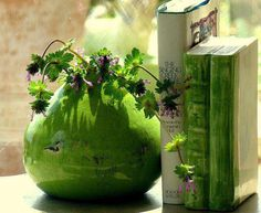Victoria Station love the green~purple❤️〰 Vase Vert, Beautiful Flowers, Beautiful Pictures, Beautiful Things, Tadelakt, Still Life Photos, Green Life, Color Themes, Shades Of Green