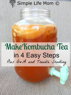 Step by step instructions on How to Make Kombucha Tea. This kombucha recipe has easy instructions for a healthy gut, & probiotic drink for natural health. Recipes step by step How to Make Kombucha – Easy Step by Step Instructions Probiotic Drinks, Detox Drinks, Healthy Drinks, Healthy Lunches, Fermented Tea, Fermented Foods, Benefits Of Kombucha Tea, Tea Benefits, Autogenic Training