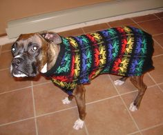 Grandpa's old sweaters never looked so good...not even in the 80's...sorry gramps! I was o-so super lucky to find this wool sweater in someone's trash on city trash pick up day.Just follow these easy steps and learn how to re-purpose a Large men's sweater into a Large doggie sweater.