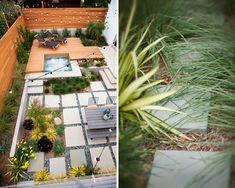 backyard pic 1.jpg