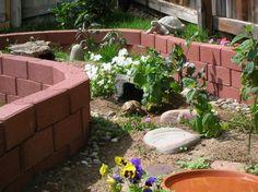 outdoor tortoise enclosure | Outdoor Enclosure