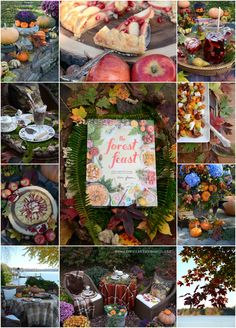 Novel Bakers The Forest Feast Lovely recipe, lovely book and tips on Photography! What could be better?