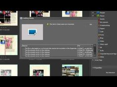 How to organize the Digi Files using Photoshop Elements | A Tutorial from digitalscrapbookinghq.com