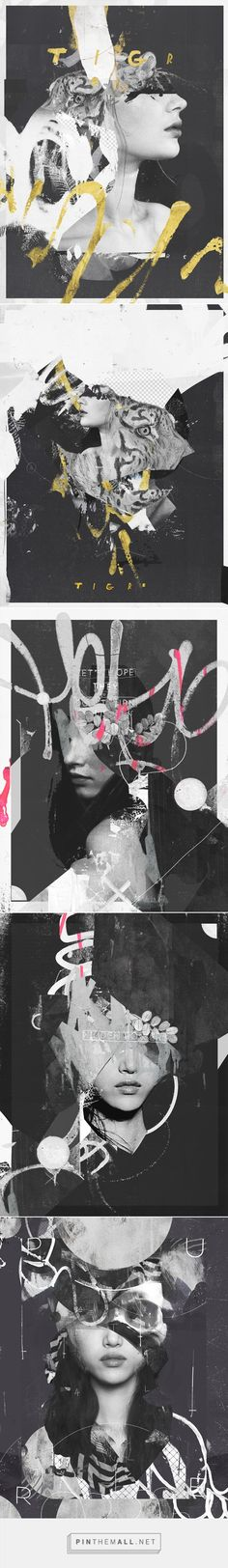 Collages - 2015 on Behance_Raphael Vicenzi - created via http://pinthemall.net