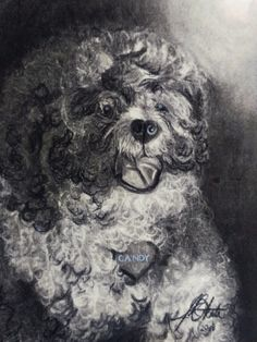 Charcoal on Paper. Charcoal, Candy, Paper, Artwork, Painting, Work Of Art, Auguste Rodin Artwork, Painting Art, Artworks