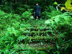 2016年10月 伊豆・大沢温泉旅|山神社・祠【男性セラピスト|東京新宿たけそら】