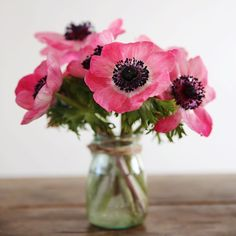 Happy Friday beautiful people! Have a wonderful day and don't forget to share your floral images for #floralfridaycompetition. xo