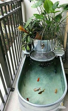 New house pond - balcony decoration - conservatory ideas- Neuer Hausteich – Balkondekoration – Wintergarten Ideen New house pond – balcony decoration / # Balcony decoration pond garden decorations -