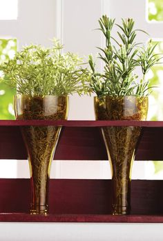 Upcycle a few old wine bottles into a colorful indoor garden. Get the tutorial here!