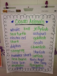 Anchor Chart- listing all of the ocean animals that my students knew about BEFORE we read our story of the week!