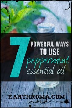 7 powerful ways to use Peppermint Essential Oil