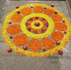 Rangoli Designs Latest, Rangoli Designs Flower, Rangoli Border Designs, Small Rangoli Design, Rangoli Ideas, Rangoli Designs Diwali, Rangoli Designs Images, Diwali Rangoli, Flower Rangoli