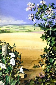 """Honeysuckle, Ivy, Greater Bindweed and White Bryony in front of a field and countryside landscape."" Illustrator Rowland & Edith Hilder"
